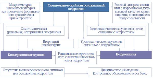 Схема лечения нефроптоза