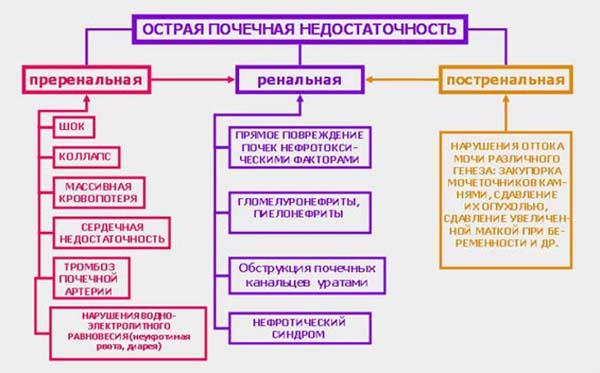 Формы и развитие ОПН