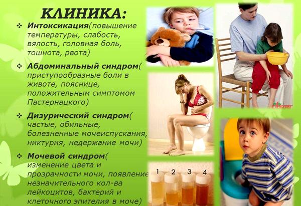 Клинические проявления почечных заболеваний у детей
