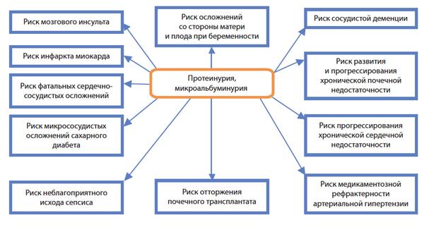 Риск развития различных заболеваний при протеинурии