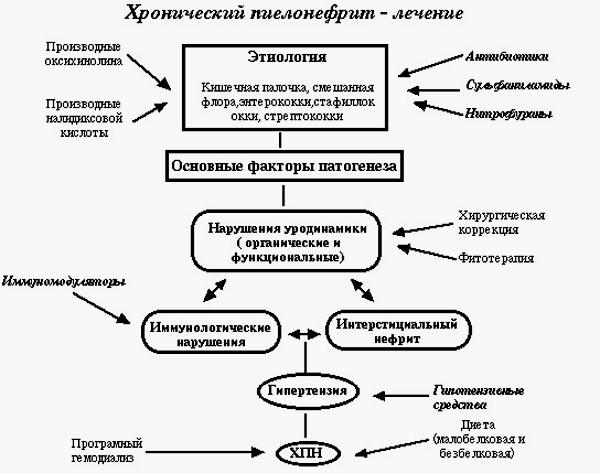 Схема лечения хронической формы почечного воспаления