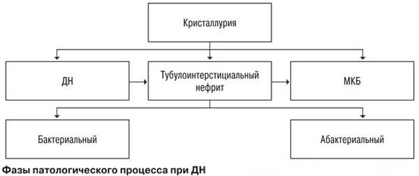 Дисметаболическая нефропатия - стадии