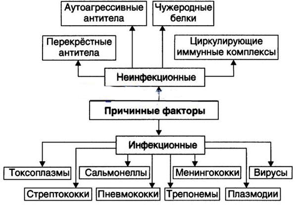Причинные факторы острого диффузного гломерулонефрита