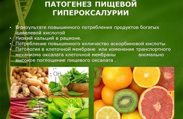 Патогенез пищевой гипероксалурии