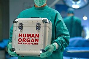 Контейнер для донорского органа