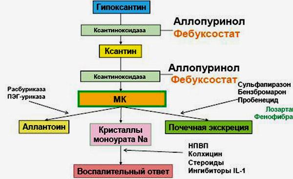 Лекарства от гиперурикемии