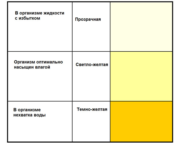 Определение степени обезвоживания по цвету мочи