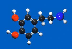 Структура молекулы дофамина